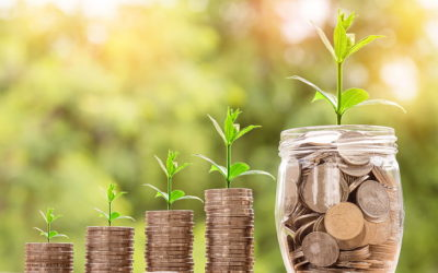 An Era of Ecological Revolution: Market needs and trends supported by green banking Why reshaping bussinesses value is needed?